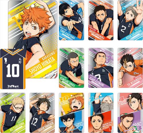 AmiAmi [Character & Hobby Shop] | Haikyuu!! Metallic Plate 12Pack BOX