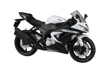 1/12 Complete Motorcycle Model Kawasaki Ninja ZX-6R 2014 (White)(Released)1/12 完成品バイク Kawasaki Ninja ZX-6R 2014(ホワイト)Accessory
