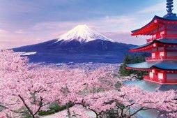 ジグソーパズル めざせパズルの達人(日本風景・春柄) 五重塔から望む桜富士-山梨 1000ピース(10-787)[エポック]《在庫切れ》
