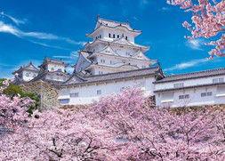 ジグソーパズル めざせパズルの達人(日本風景・春柄) 姫路城の満開桜-兵庫 500ピース(05-103)[エポック]《取り寄せ※暫定》
