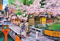 ジグソーパズル めざせパズルの達人(日本風景・春柄) 桜の巽橋-京都 300ピース(25-138)[エポック]《取り寄せ※暫定》