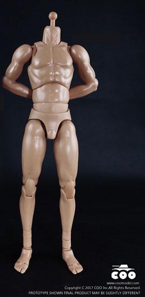 1/6 男性素体 スタンダード マッスルアーム 高身長[COO Model]《在庫切れ》