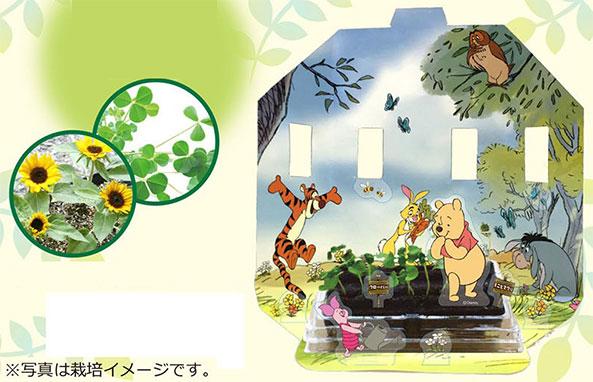 世界でいちばん小さな畑(栽培キット) プーさん(ミニヒマワリ&クローバー)[テンヨー]《在庫切れ》
