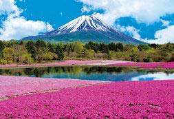 ジグソーパズル パズルの超達人EX(日本風景)芝桜と富士-山梨 1053ピース (31-002)[エポック]《取り寄せ※暫定》