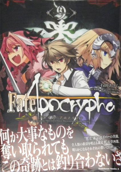 Fate/Apocrypha 9 (書籍)