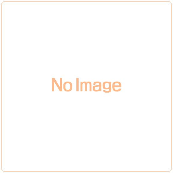 【クリックで詳細表示】仮面ライダー鎧武 DXイチゴロックシード[バンダイ]《在庫切れ》