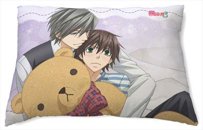AmiAmi [Character & Hobby Shop] | Junjou Romantica 3 ...
