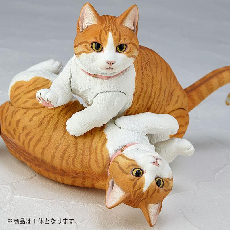 Sofubi Toy Box 016A Cat Munchkin Sofubi Figure(Pre-order)ソフビトイボックス 016A ネコ マンチカン ソフビフィギュアScale Figure