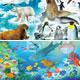 「できる」シリーズ くもんのジグソーパズル STEP4 たんけん 動物の世界
