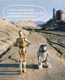 144ピース ジグソーパズル+パネルセット スター・ウォーズ R2-D2&C-3PO(W-144-639)[テンヨー]《在庫切れ》