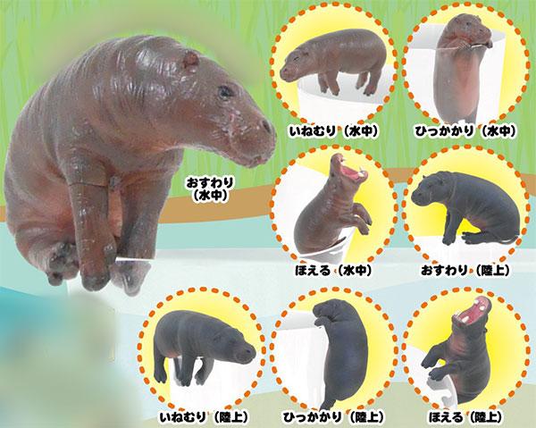 PUTITTO コビトカバ 12個入りBOX[奇譚クラブ]【送料無料】《在庫切れ》