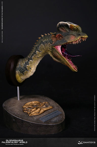 ミュージアムシリーズ ディロフォサウルス バストB