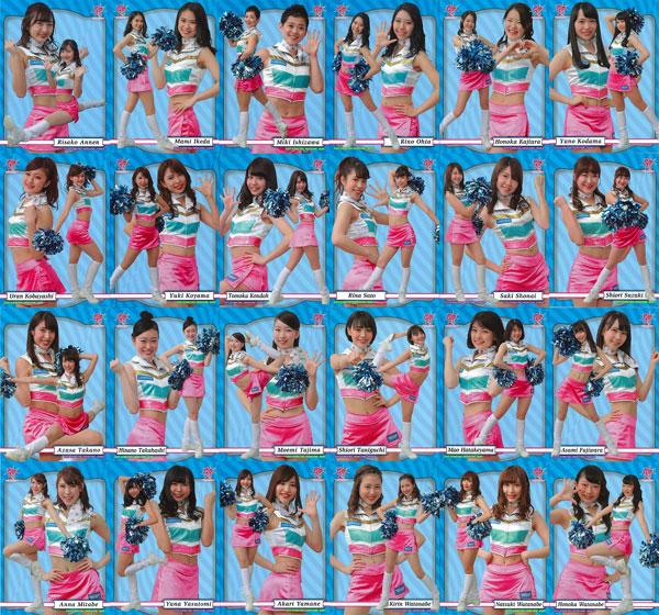 """BBM北海道日本ハムファイターズ """"エンタメ"""" カードセット2017 ~FIGHTERS GIRL & B☆B FAMILY~[ベースボール・マガジン社]《在庫切れ》"""