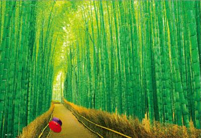 ジグソーパズル 嵯峨野の竹林 300ピース (33-150)[ビバリー]《在庫切れ》