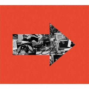 CD BLUE ENCOUNT / VECTOR 初回生産限定盤 DVD付[SME]《取り寄せ※暫定》