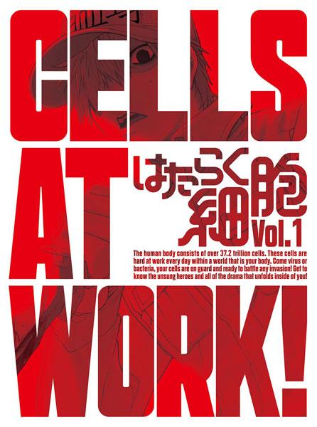 はたらく細胞 1 完全生産限定版
