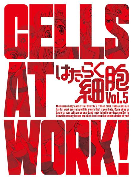 BD はたらく細胞 5 完全生産限定版 (Blu-ray Disc)[アニプレックス]《在庫切れ》