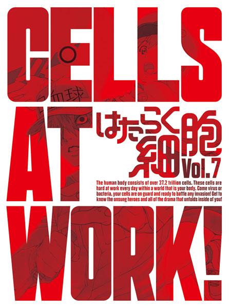 BD はたらく細胞 7 完全生産限定版 (Blu-ray Disc)[アニプレックス]《在庫切れ》