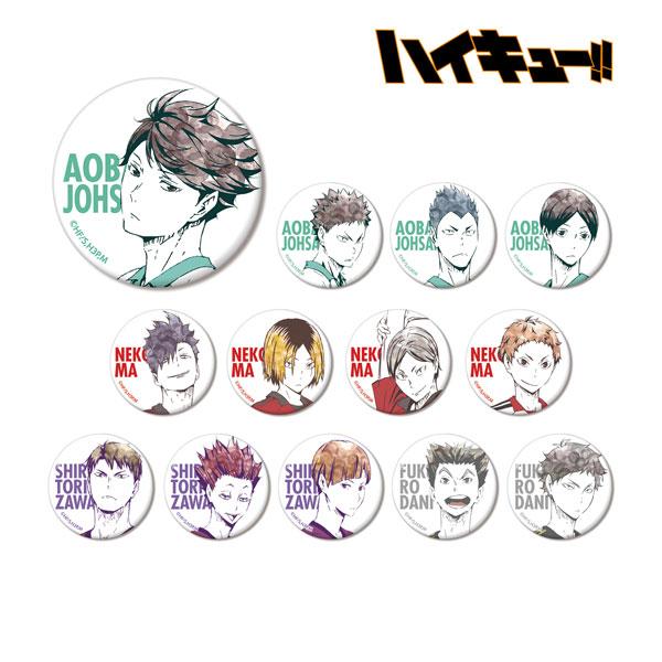 ハイキュー!! トレーディング Ani-Art 缶バッジ Ver.B 13個入りBOX(再販)[アルマビアンカ]《在庫切れ》