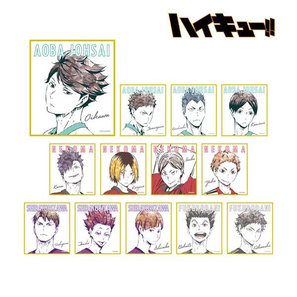 ハイキュー!! トレーディングAni-Art ミニ色紙 Ver.B 13個入りBOX(再販)[アルマビアンカ]《06月予約》