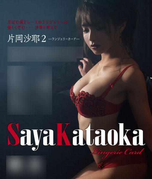 【特典】片岡沙耶2 -ランジェリーカード- 5BOXセット[ヒッツ]【送料無料】《在庫切れ》