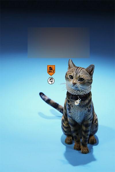 1/6 家猫 FC003[MR.Z]《在庫切れ》