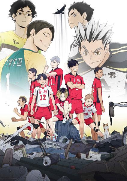 BD OVA ハイキュー!! 陸 VS 空 (Blu-ray Disc)[東宝]《取り寄せ※暫定》