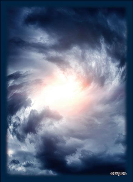 ブロッコリーハイブリッドスリーブ 「嵐の心臓」 パック[ブロッコリー]《在庫切れ》