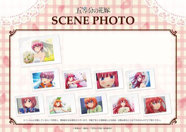 五等分の花嫁 SCENE PHOTO 10個入りセット[MOGURA ENTERTAINMENT]《06月予約》
