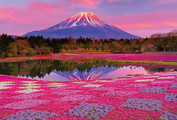 ジグソーパズル 夕陽に染まる富士 1000ピース (51-278)[ビバリー]《在庫切れ》