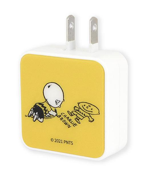 ピーナッツ USB 2ポート ACアダプタ チャーリー・ブラウン[グルマンディーズ]《06月予約》