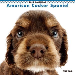 THE DOG カレンダー アメリカンコッカー (2019年)