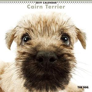 THE DOG カレンダー ケアーンテリア (2019年)