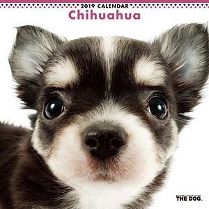 THE DOG カレンダー チワワ (2019年)