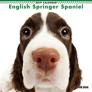 THE DOG カレンダー イングリッシュスプリンガー (2019年)