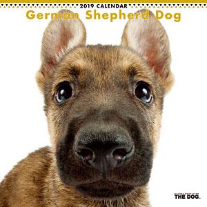 THE DOG カレンダー ジャーマンシェパード (2019年)