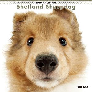 THE DOG カレンダー シェットランドシープドッグ (2019年)