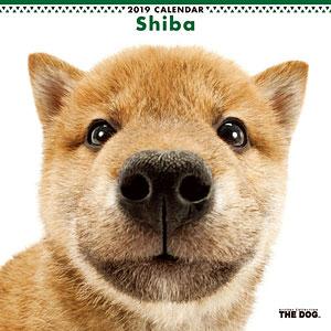 THE DOG カレンダー シバ (2019年)