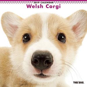 THE DOG カレンダー ウェルシュコーギー (2019年)