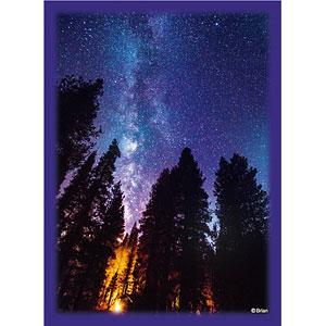 ブロッコリーハイブリッドスリーブ 「星夜の灯火」 パック