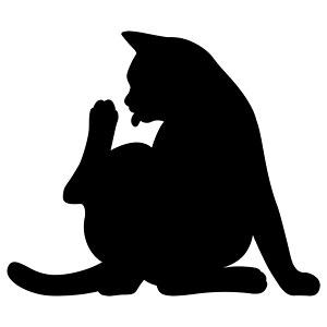 CAT WALL LIGHT2 07 けづくろい