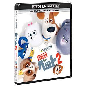 BD ペット2 4K ULTRA HD+ブルーレイ (Blu-ray Disc)