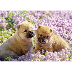 ジグソーパズル ペット ひなたぼっこ犬 108ピース (01-073)