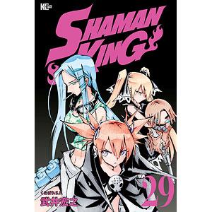 SHAMAN KING(29) (書籍)