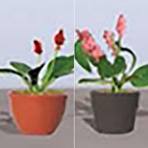 鉢植えの花セット3 HOスケール (6鉢入り)